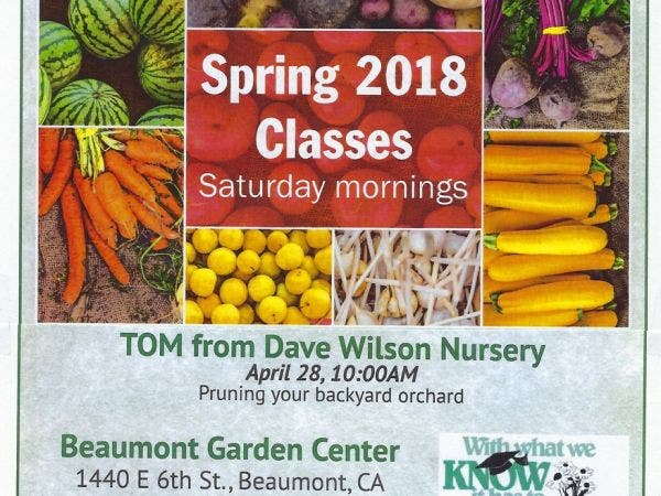 Free Orchard Pruning Class w/ Tom from Dave Wilson Nursery - Apr 28 Free Orchard Pruning Class W/ Tom From Dave Wilson Nursery