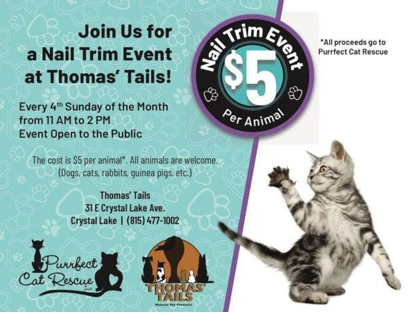 Jan 27 5 Nail Trim Event At Thomas Tails Crystal Lake Cary Il