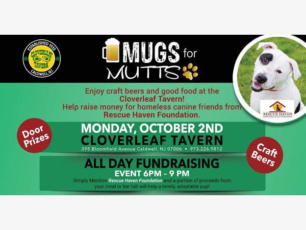 oct 2 mugs for mutts to benefit rescue haven foundation