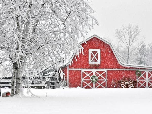 38th annual christmas in the country craft show - Christmas In The Country
