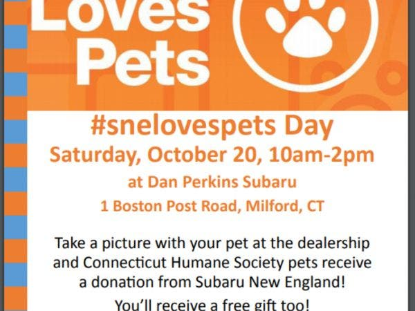 Oct 20 Join Dan Perkins Subaru And The Connecticut Humane Society