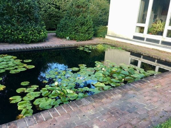 Oct 6 | Water Features in the Garden: Roundtable & Tour | East ...