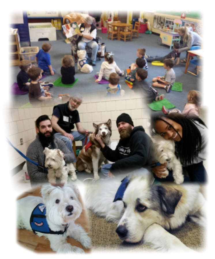 Jun 3 | Still Time to Enroll in the Therapy Dog
