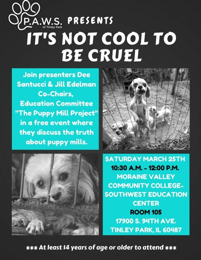 Mar 25 | PAWS Of Tinley Park Presents - It's Not Cool To Be