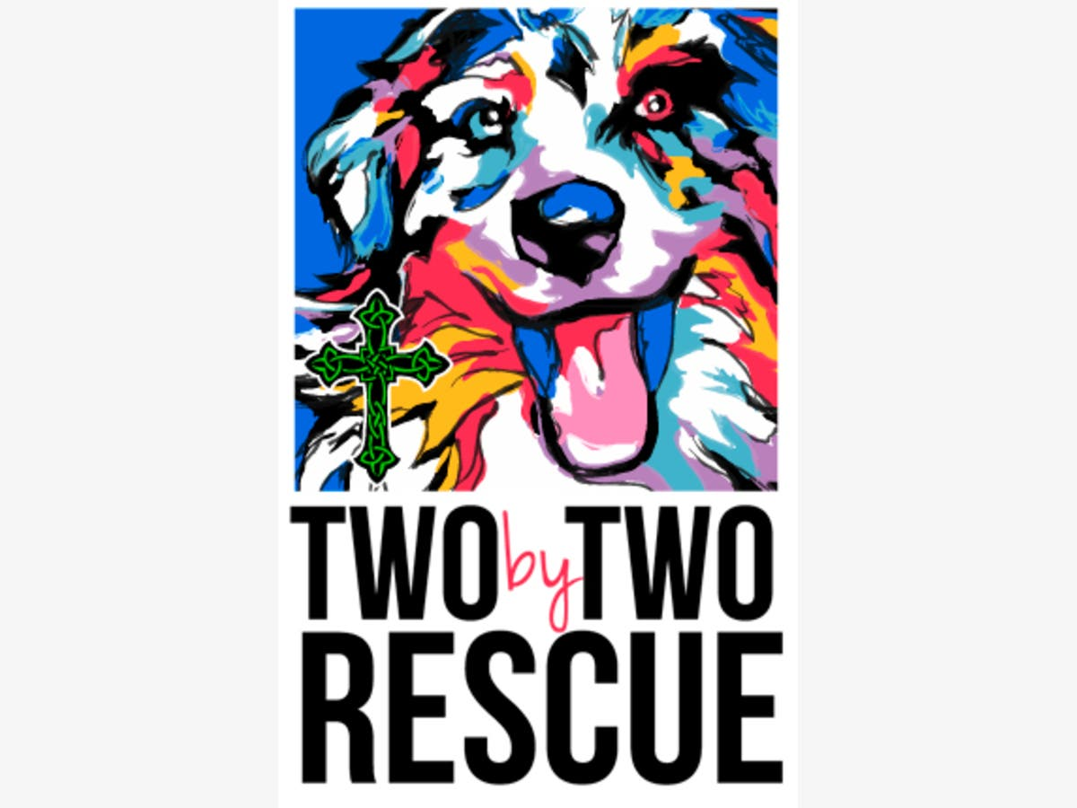 Nov 12 | Two by Two Rescue's Barktoberfest NEW DAY AND TIME | Pelham