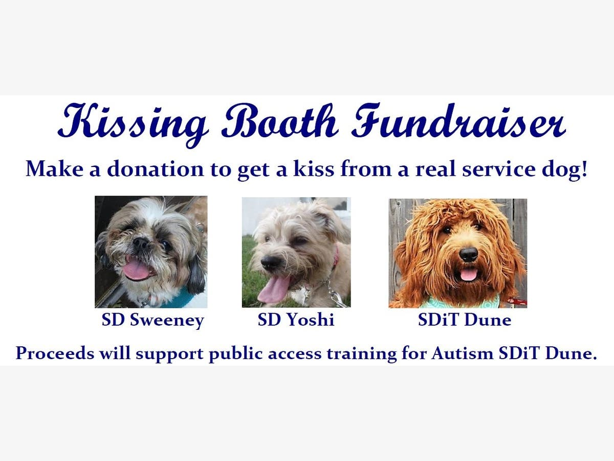 Oct 20   Service Dog Kissing Booth   Westport, CT Patch