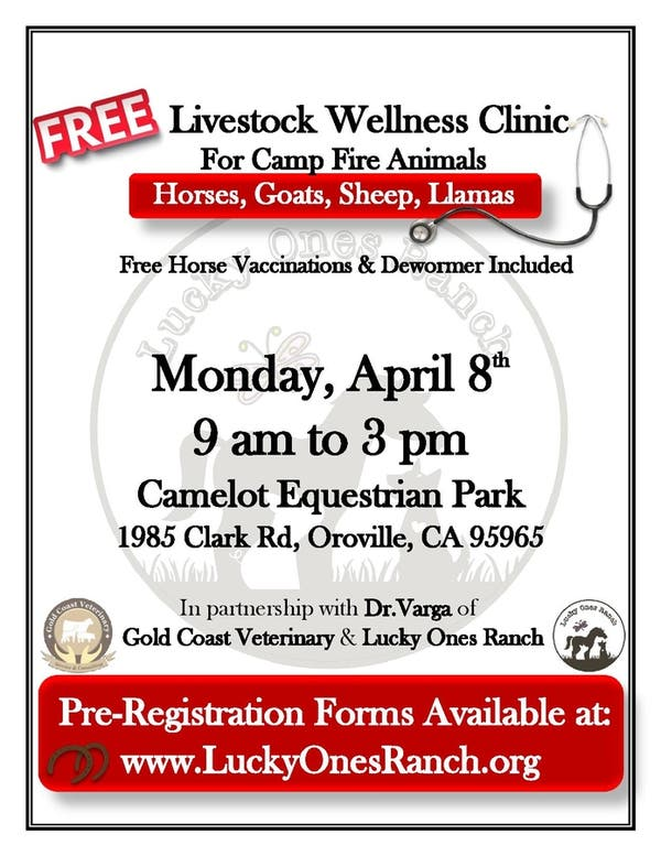 California Camelot And Vaccines >> Apr 8 Free Livestock Wellness Clinic Chico Ca Patch