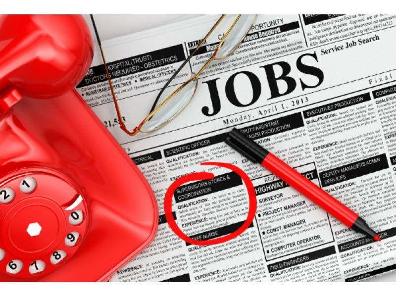 15 Job Openings in Edgewater: Labcorp, Beechnut Kennels