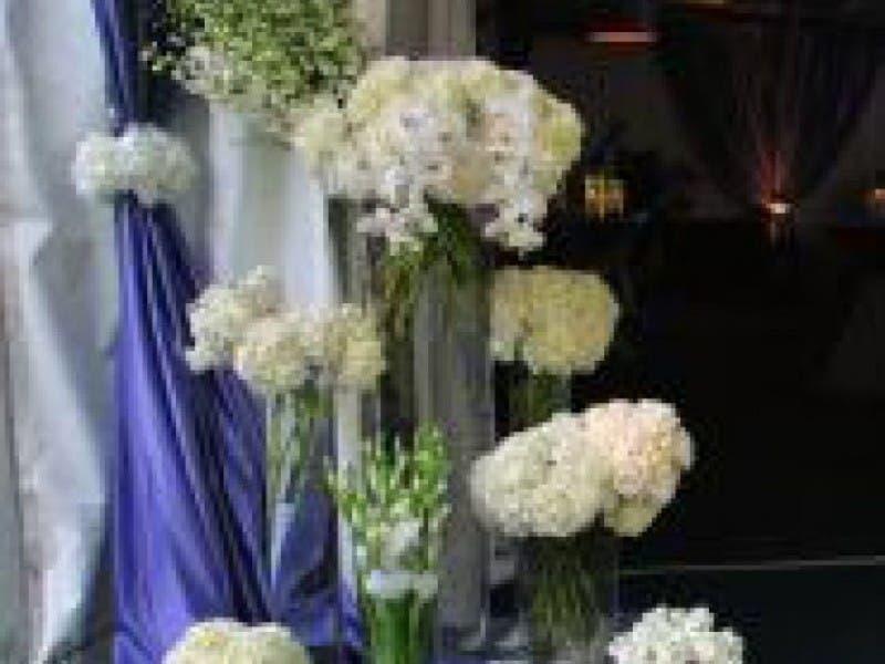 Florist to celebrate decade in business grosse pointe mi patch florist to celebrate decade in business 0 mightylinksfo