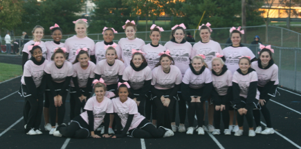 Winters Mill Falcons Turn Pink to Fight Cancer ...