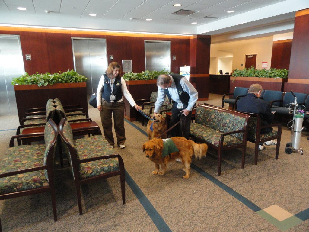 Pleased to Greet You: Dogs Welcome Visitors to Cleveland