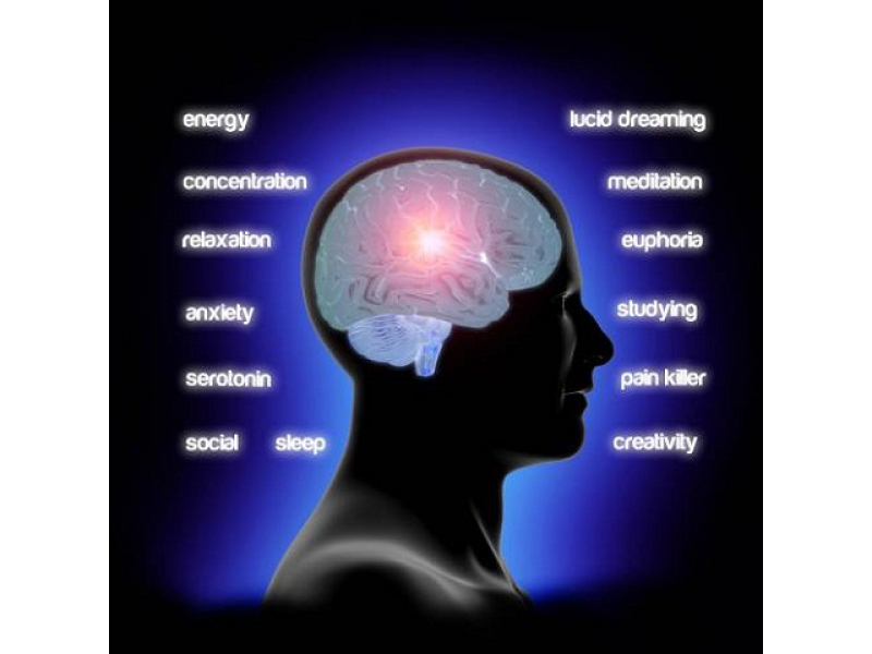 A Quick Guide to Binaural Beats | Plainview, NY Patch