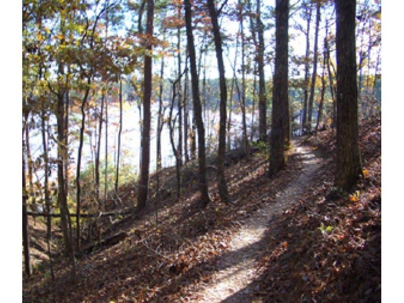 Atlanta Outdoor Club Mountain Biking At Tribble Mill