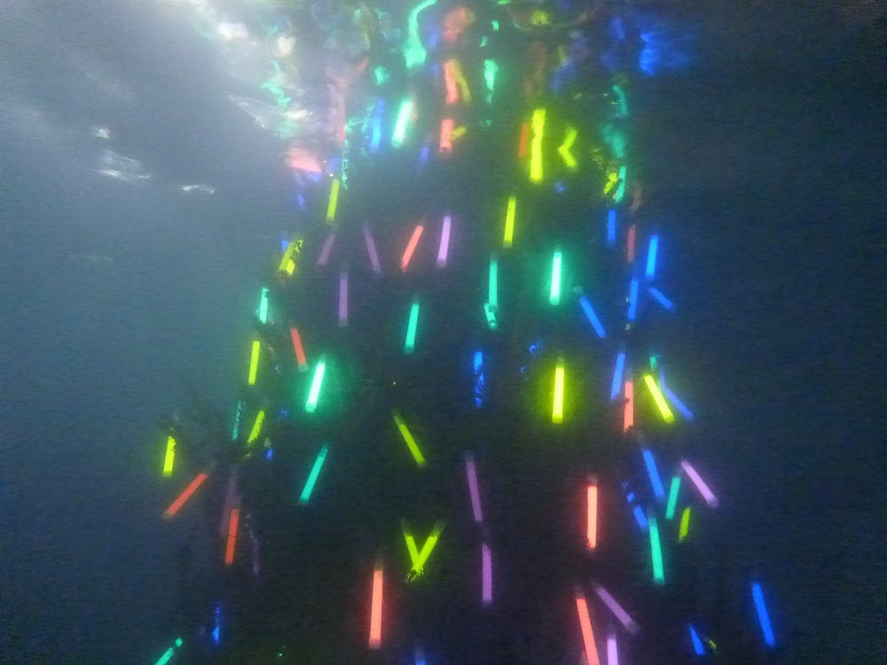 Underwater Christmas Tree Lighting In East Cobb Generated Thousands
