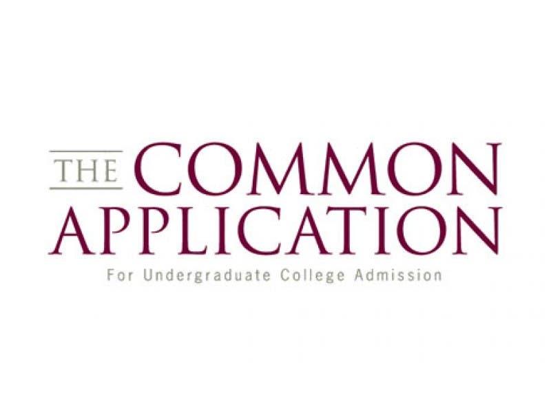 common app sample essays