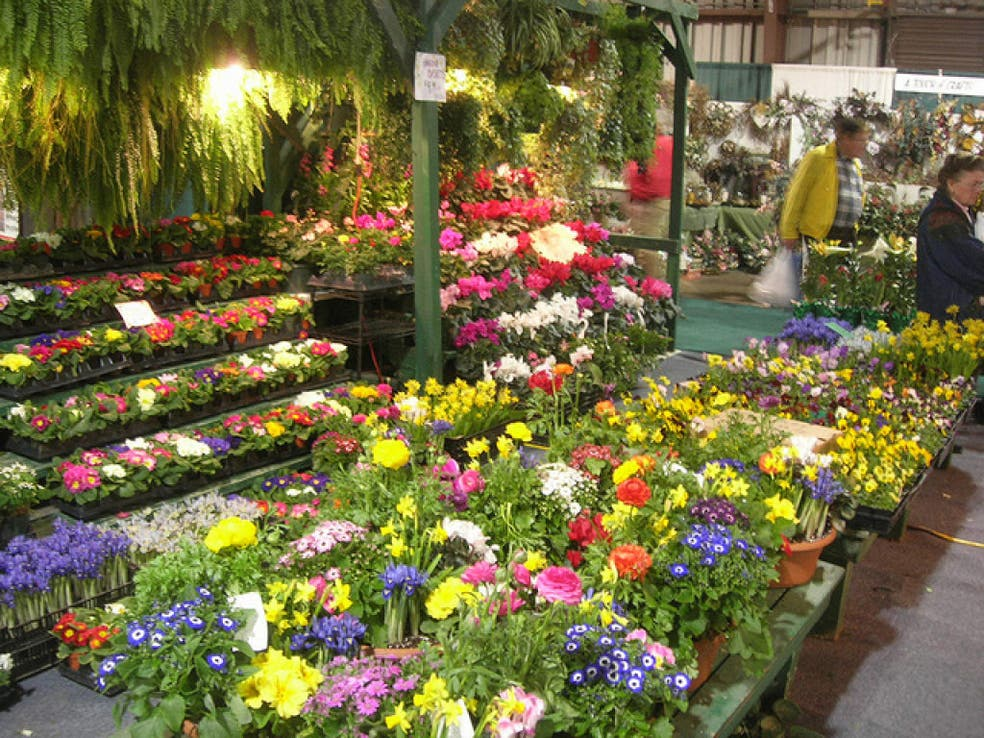 maryland home & garden show | lutherville, md patch