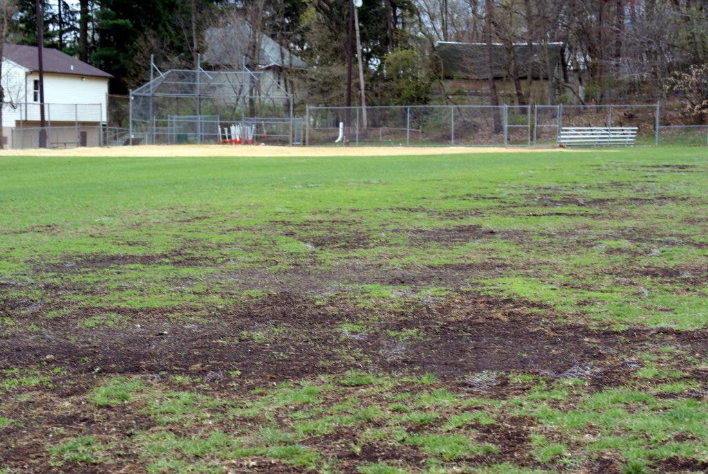 Residents Awaiting Memorial Field Decision, Board Shoots