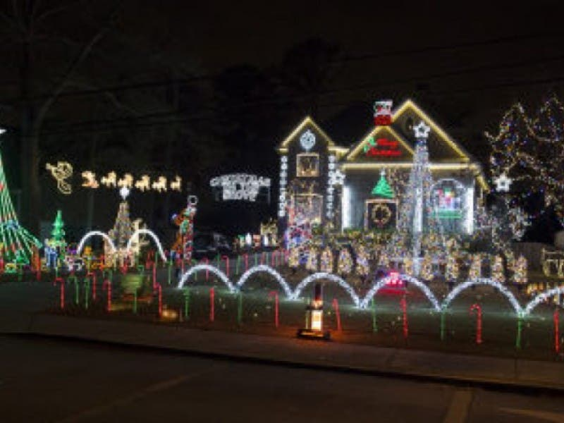 Best Christmas Lights in Tampa Bay | Tampa, FL Patch