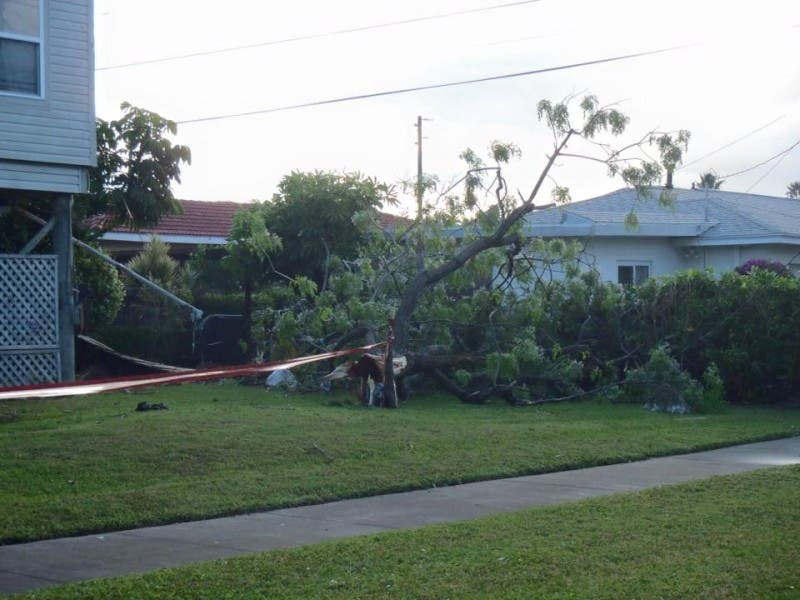 Clearwater Storm Damage Widespread