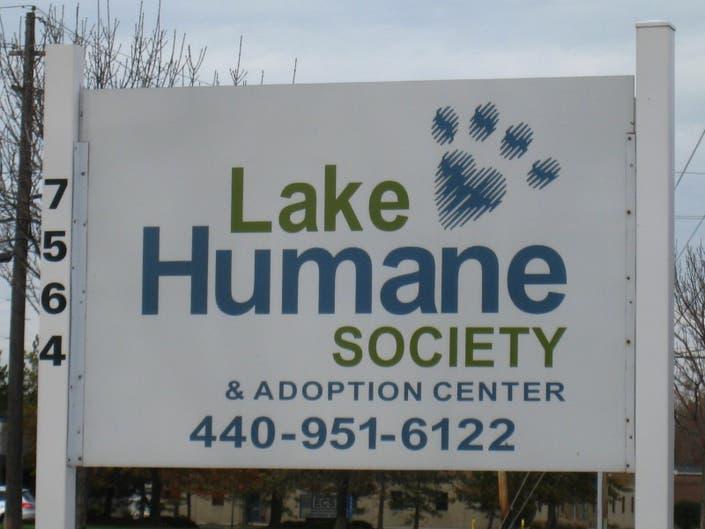 Lake Humane Society Needs Help Restocking Shelves | Mentor