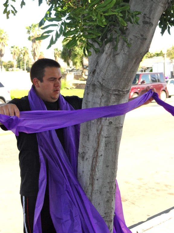 Purple Ribbons Meant to Spur Residents to Participate in Cancer