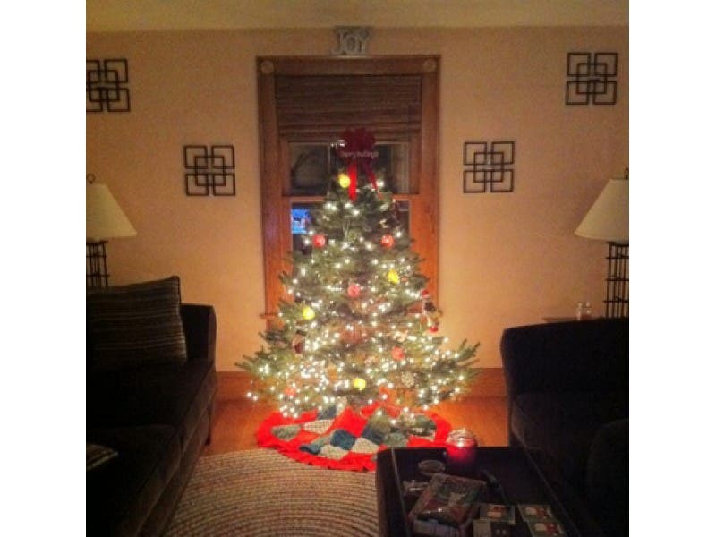 Extend Life Of Christmas Tree With Fire Marshal's Tea