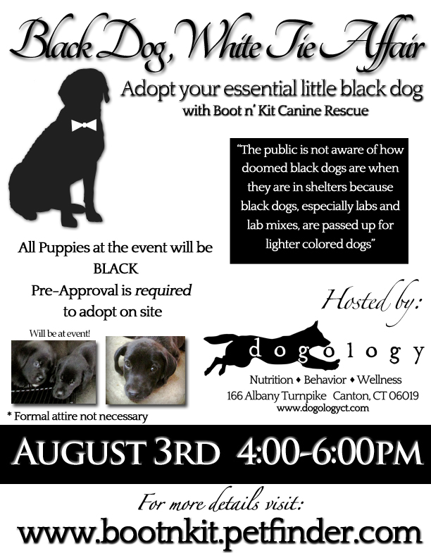 Black Dog, White Tie Affair | Canton, CT Patch