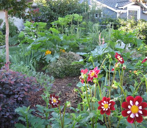 Garden Design Ideas Edible Landscaping Tour This Saturday