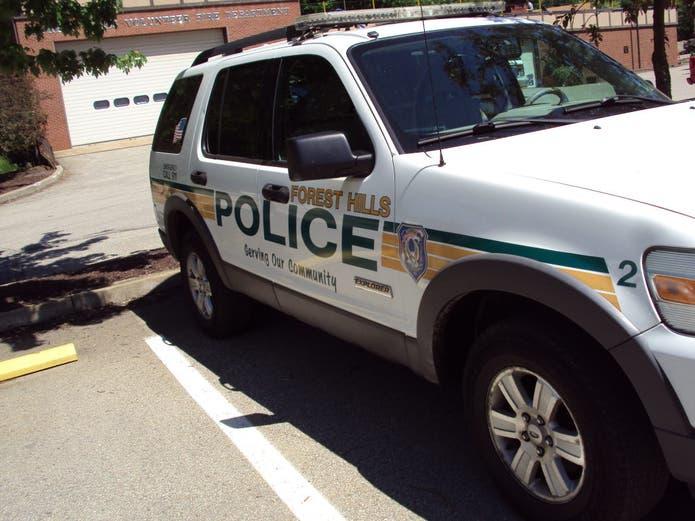 Police Arrest Theft Suspect, Quell Concerns About Bones in ...