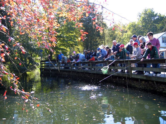 The Great Escape: Fishing at the Cold Spring Harbor Fish Hatchery-2