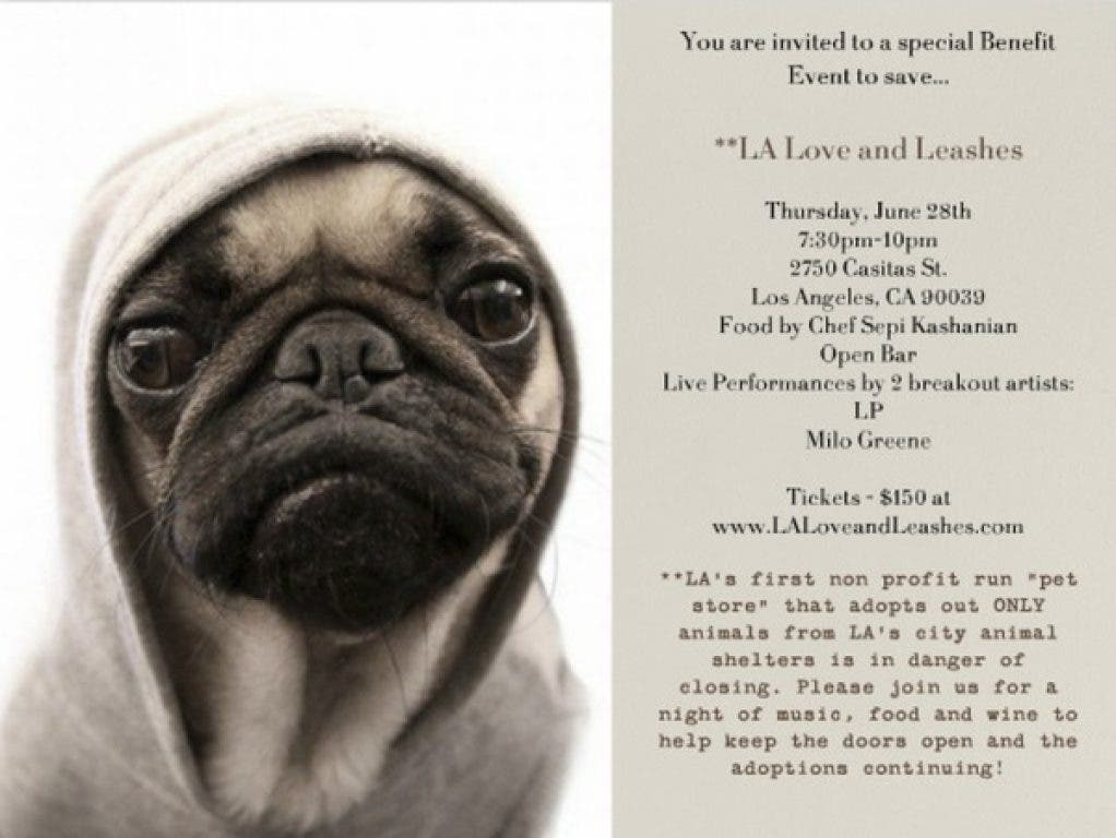 LA Love & Leashes Shelter Pet Store in Mall - Will They