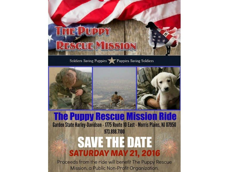 The Puppy Rescue Mission Harley Ride Morris Township Nj Patch