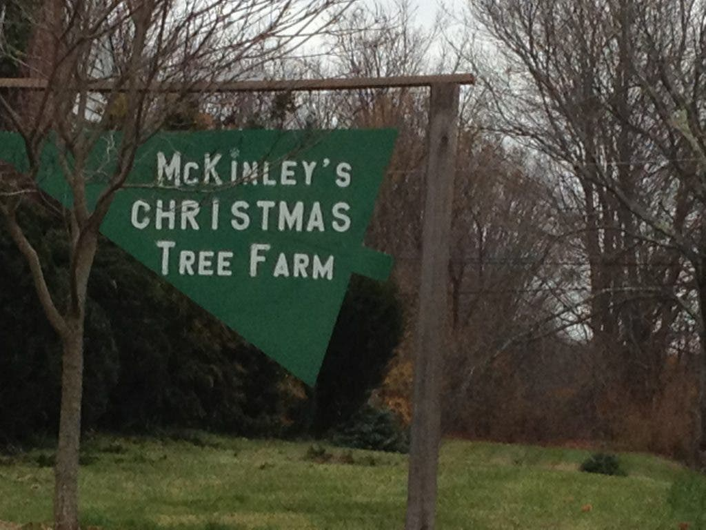 Small Business Profile: Bob McKinley's Christmas Tree Farm | Cheshire, CT Patch