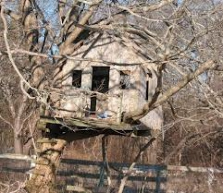 Summer Project Create Secret Garden Fort Or Treehouse For Your