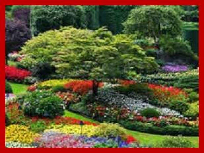 Free Spring Garden Maintenance Seminar March 5 2016 At Burke Nursery Centre