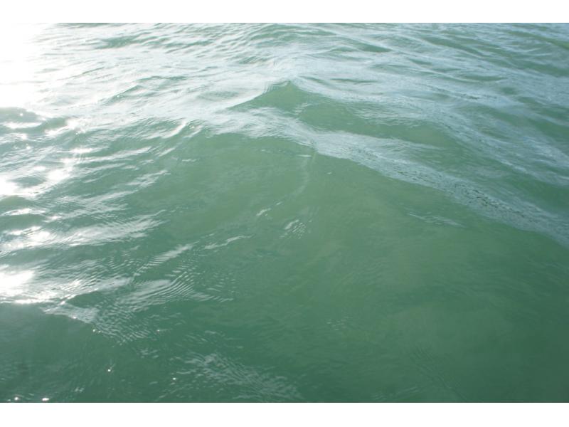 Sfpuc Peninsula Agencies Agree On 113 Million Water