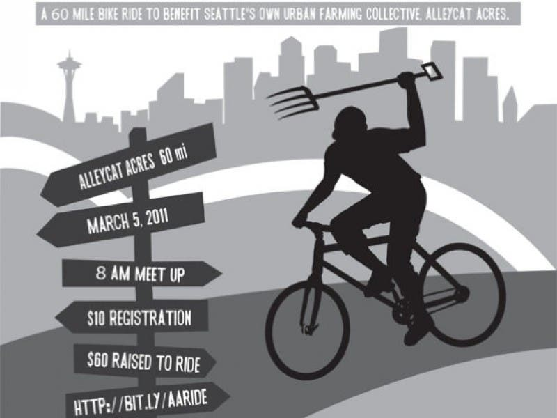 Sound Cycling Bike Tour Through Bellevue And Other Lake Washington