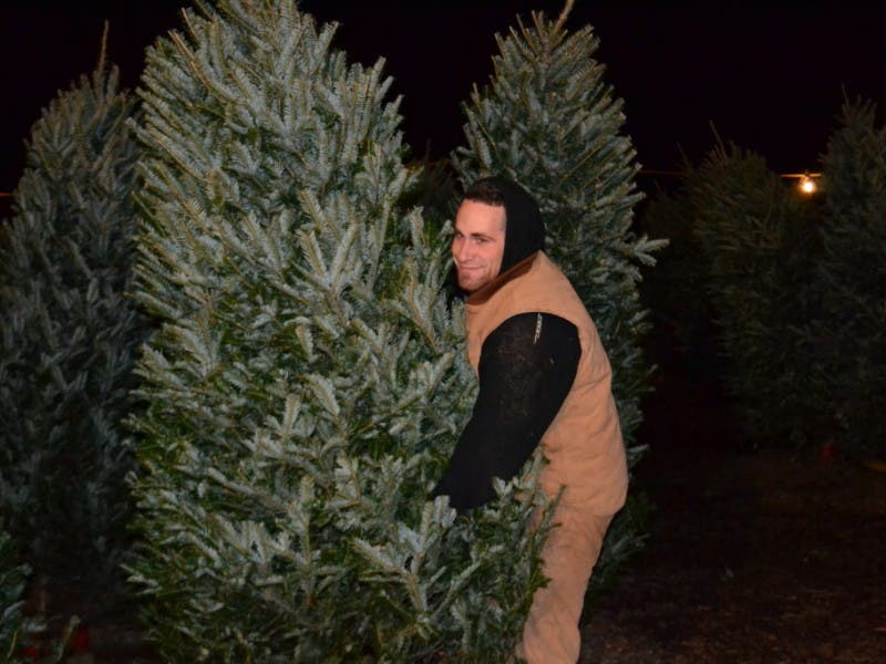 Where To Buy Fresh Christmas Trees