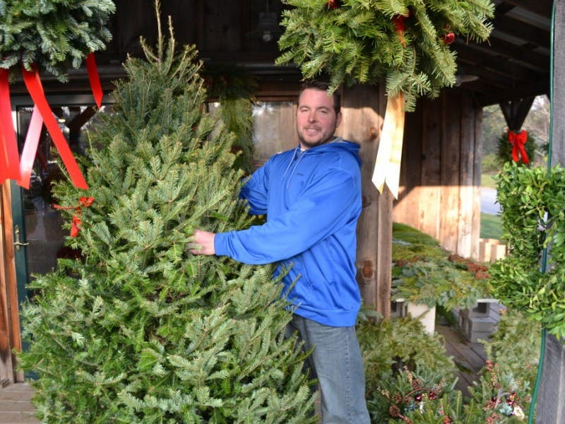 Where To Buy Fresh Christmas Trees