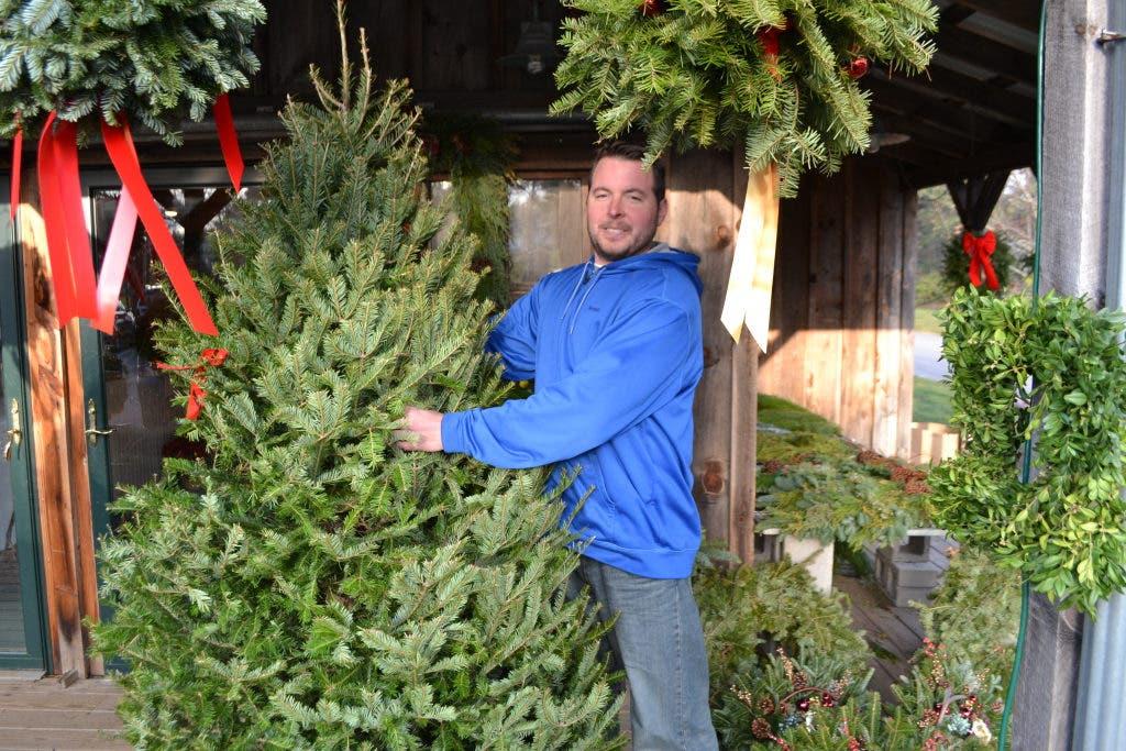 Pinehills Christmas On The Green 2021 Where To Buy Fresh Christmas Trees Plymouth Ma Patch