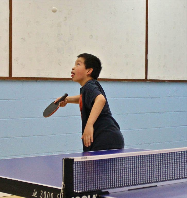 Albany Table Tennis Club Provides Top Class Coaching | Albany, CA Patch