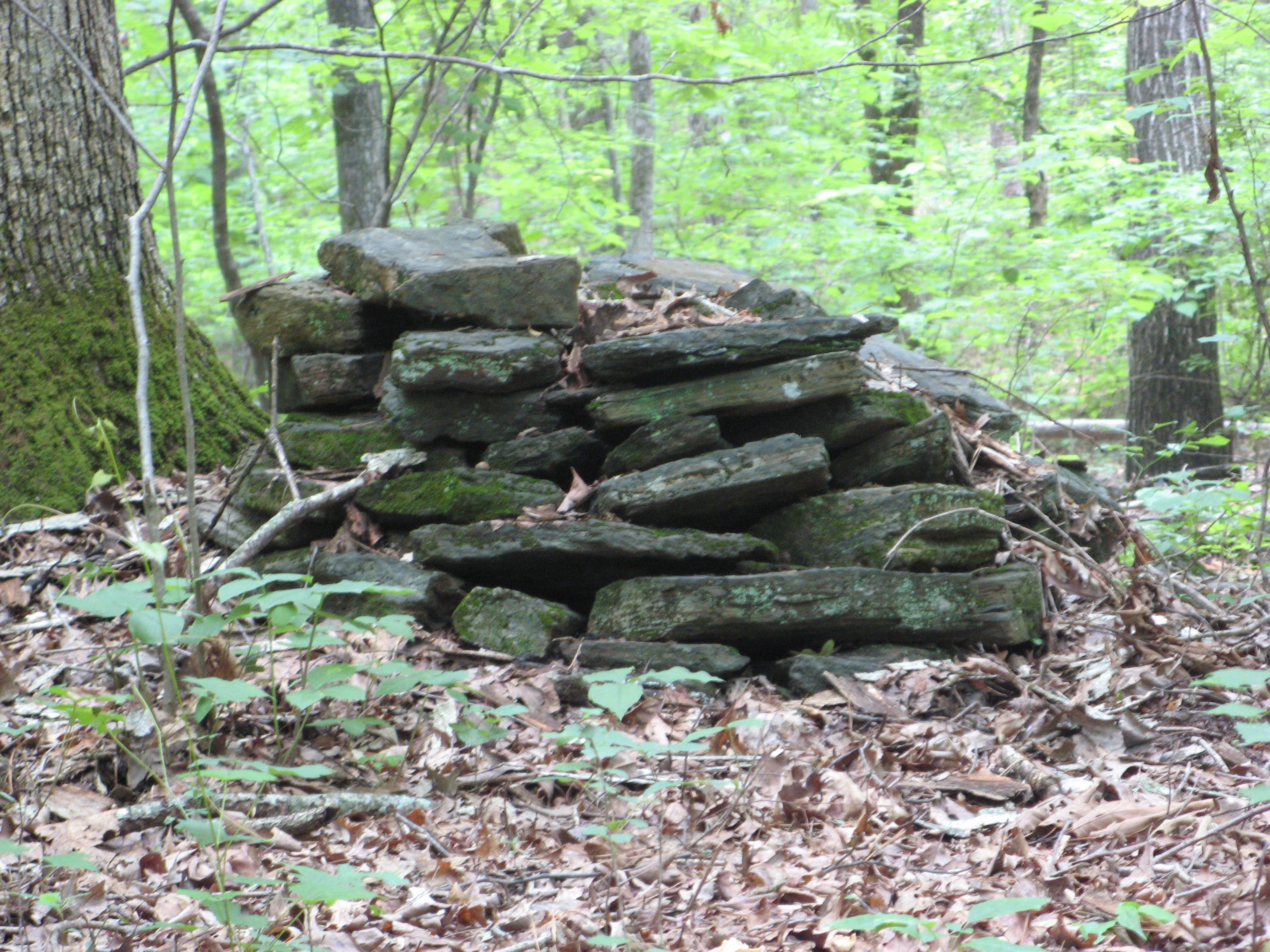 Ancient Indian Burial Grounds in Gwinnett County | Lilburn