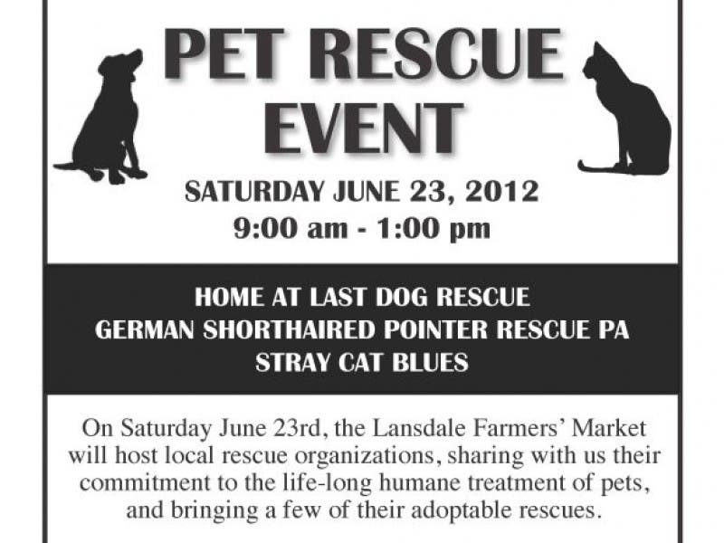 Pet Rescue Event Montgomeryville Pa Patch