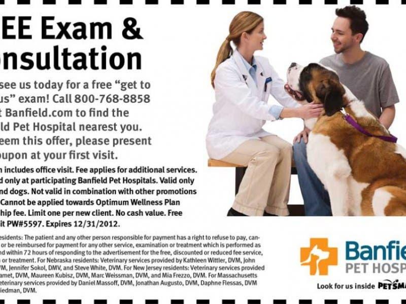 companion pet clinic coupons