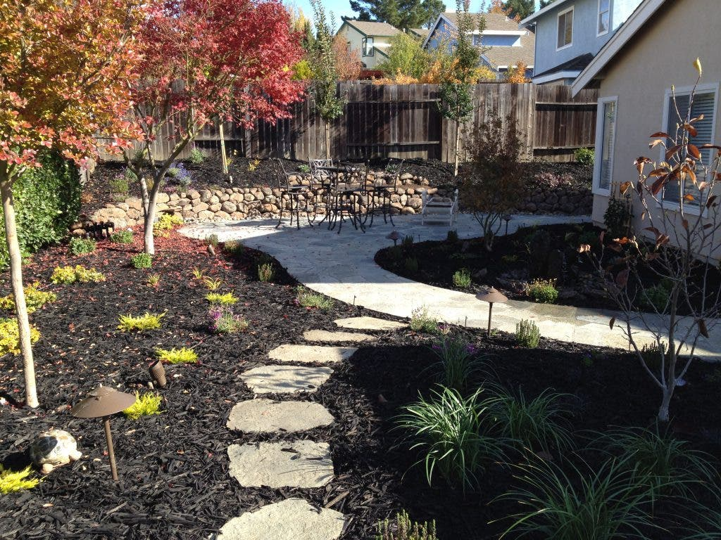 New Gardens Take Time To Mature Benicia Ca Patch