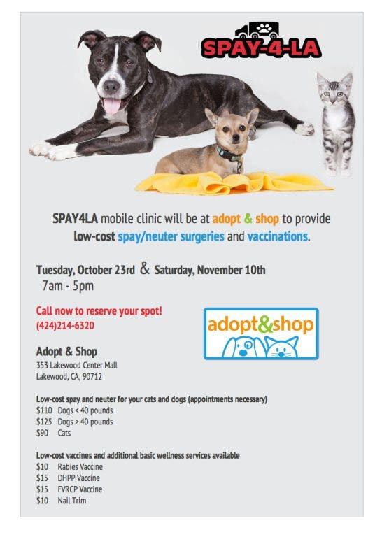 Low-cost spay/neuter and vaccines for your pet | Cerritos