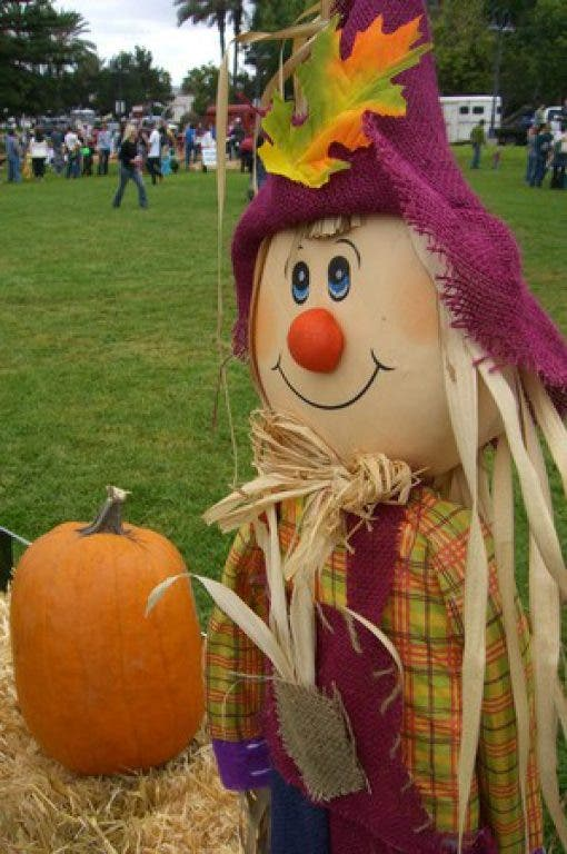 Halloween Tampa 2020 Largo Mall 6 Things to Do This Weekend, Oct. 19 21: Mall Halloween, Orange