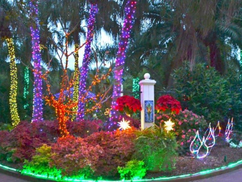 Holiday lights return to florida botanical gardens - Largo botanical gardens christmas lights ...