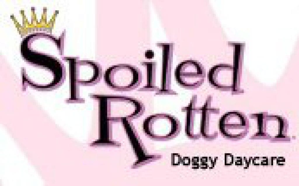 Spoiled Rotten >> Must Love Dogs At Spoiled Rotten Danvers Ma Patch