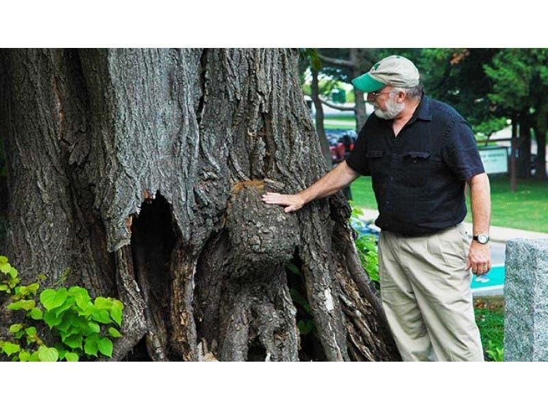 Friends Of Princeton Nursery Lands Arbor Day Celebration